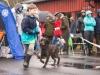 Fellesutstillingen 2016 - Barn og Hund