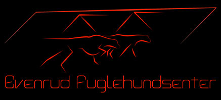 Evenrud Fuglehundsenter